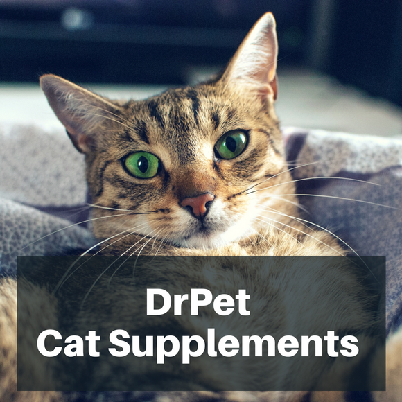 DrPet Cat Supplements