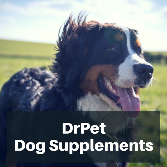 DrPet Dog Supplements