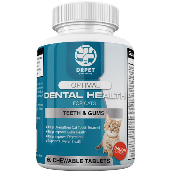 Optimal Dental Health for Cats