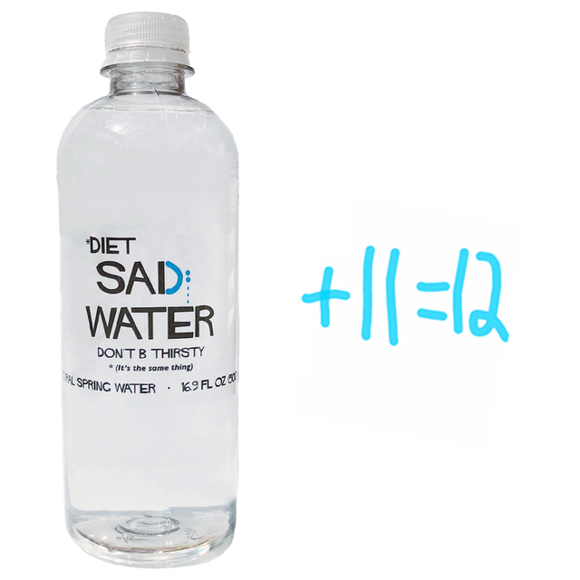 DIET SAD WATER 16 OZ. (12 Pack)