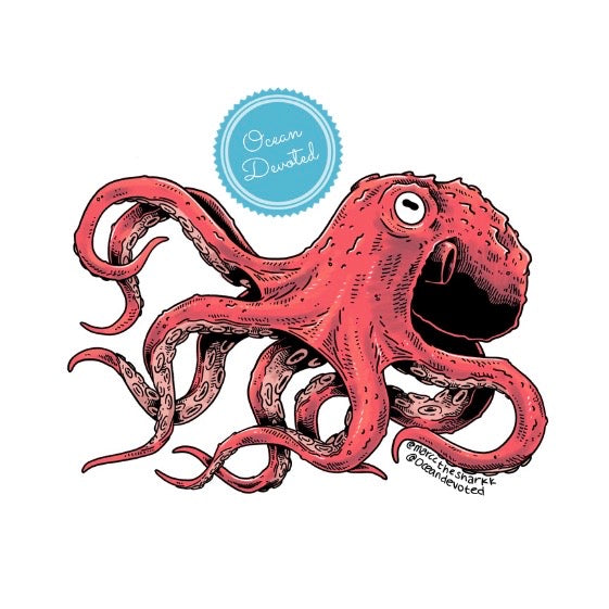 Load image into Gallery viewer, Octo Sticker