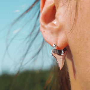 Load image into Gallery viewer, Sterling Silver Shark Tooth Earrings