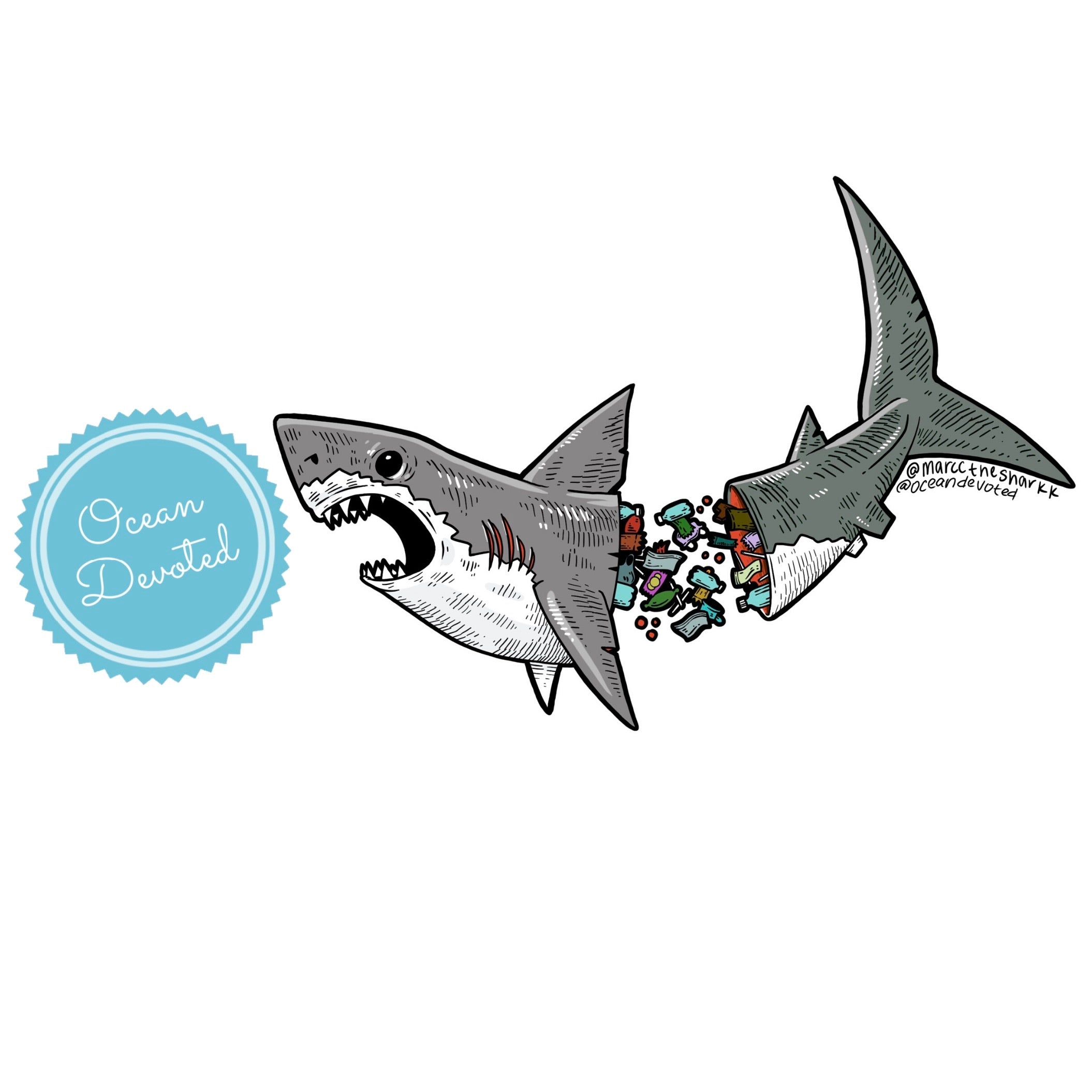 Recycle Shark