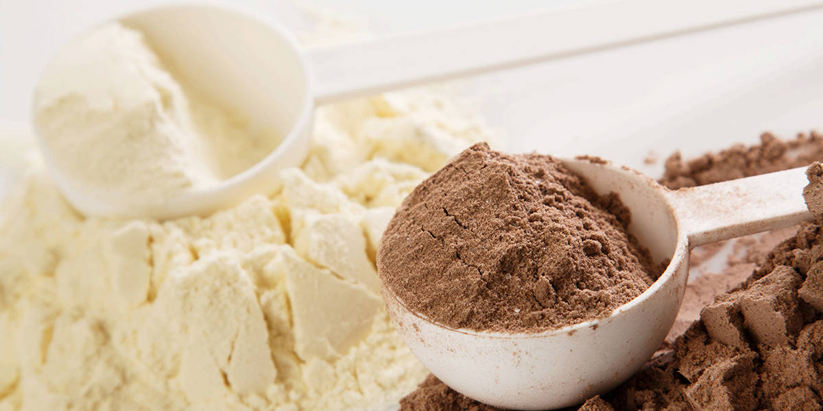 Whey Vs Plant Protein: What's Better?