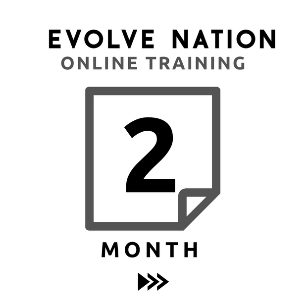 Online Training (2 Month)