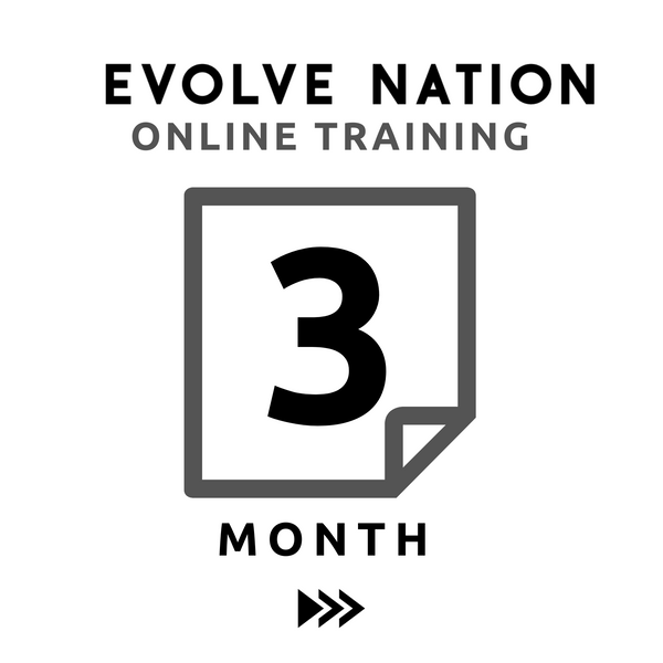 Online Training (3 Month)