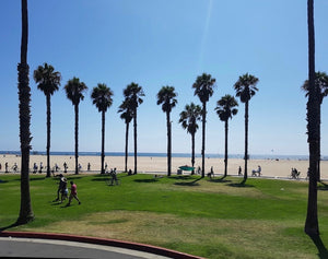 SANTA MONICA EVOLVE RUN/WORKOUT