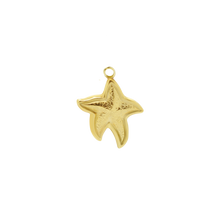 Load image into Gallery viewer, #93 Starfish XL Pendant