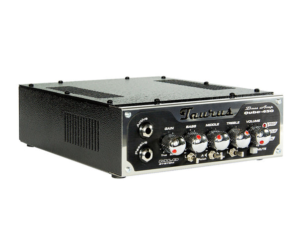 Qube 450 Bass Amplifier
