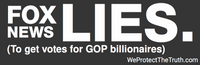 "Magnetic Bumper sticker - easy to take on and off.  ""Fox News Lies"""