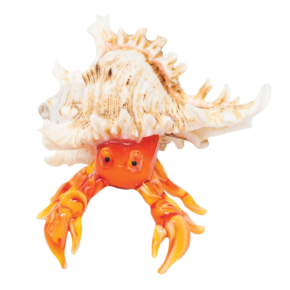 Orange Hermit Crab: 2pc