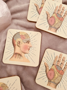 Vintage style set of 6 Phrenology & Palmistry design cork drinks coasters made by Temerity Jones. 3 of each design per pack.
