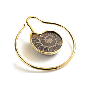 Brass spiral hoop ear stretcher weight with real ammonite fossil spiral shell insert. Fit any stretched lobe 3mm or above, sold individually.