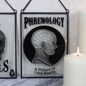 "Phrenology ""A Picture of Good Health"" glass framed wall art/plaque with hanging chain."