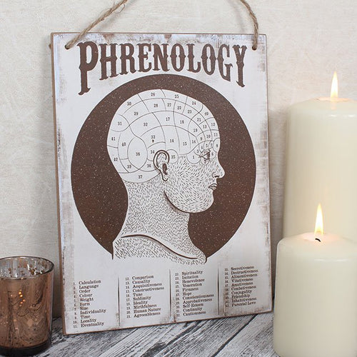Phrenology head brain map white mdf wood wall hanging art/sign.