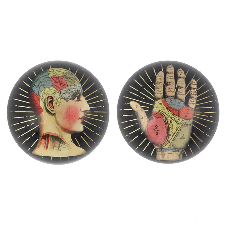 Glass dome paperweights with phrenology and palmistry detailed designs by Temerity Jones homeware