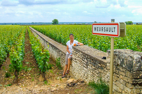 Meursault Burgundy Cycling ConnalKit