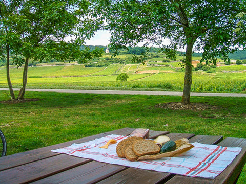 Cycle touring Picnic Burgundy ConnalKit