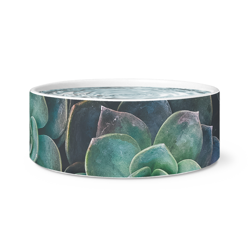Succulent Dog Bowl
