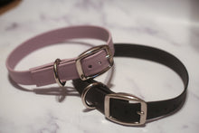 Load image into Gallery viewer, Biothane Buckle Dog Collar