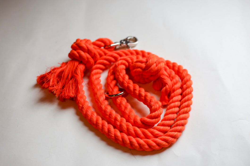 Orange Knotted Rope Leash