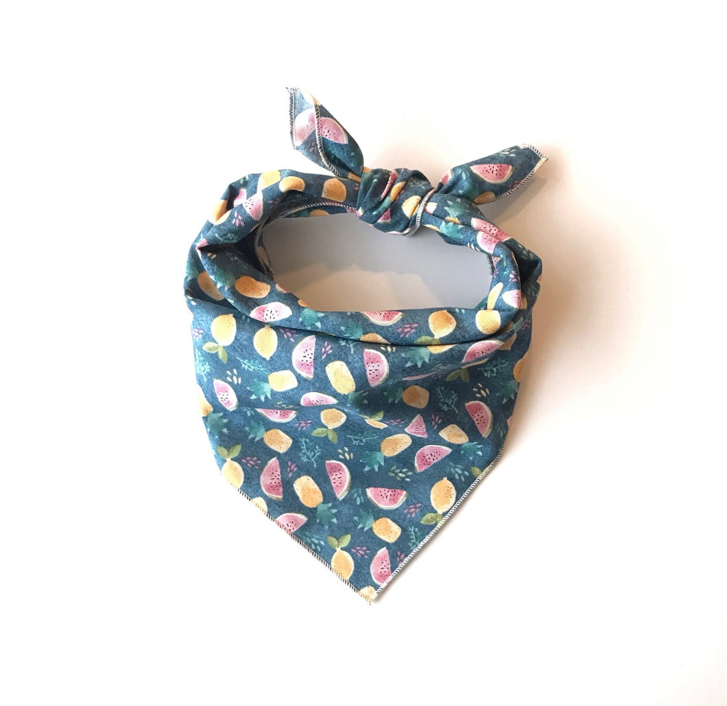 Watermelon Dog Bandana