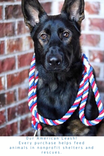 Load image into Gallery viewer, American Knotted Rope Dog Leash