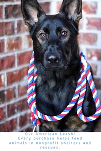 American Knotted Rope Dog Leash