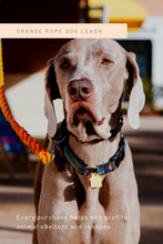 Load image into Gallery viewer, Orange Rope Dog Leash