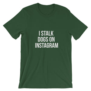 Stalk Dogs on Instagram