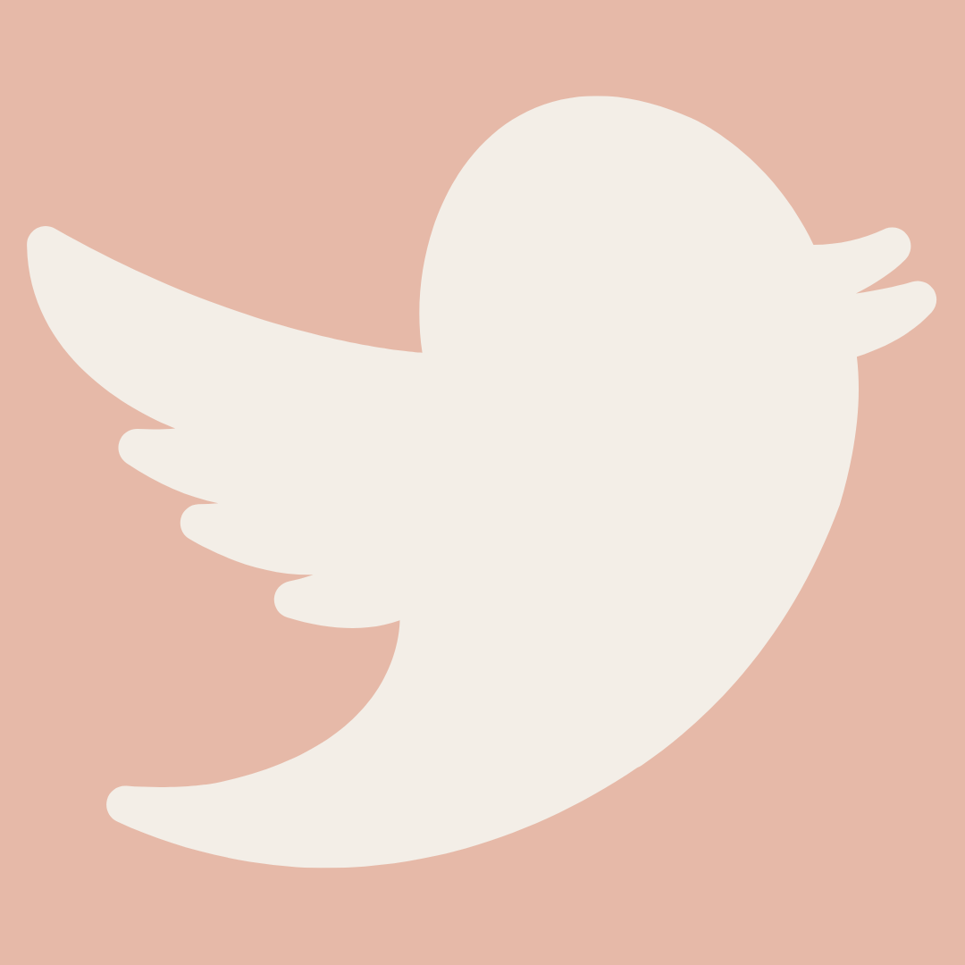 twitter bird logo on blush background