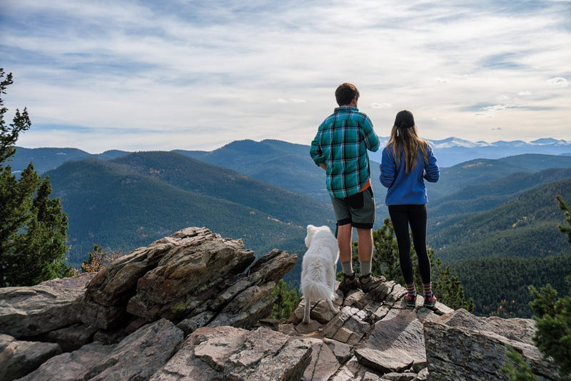 5 Tips For Hiking With Your Pets