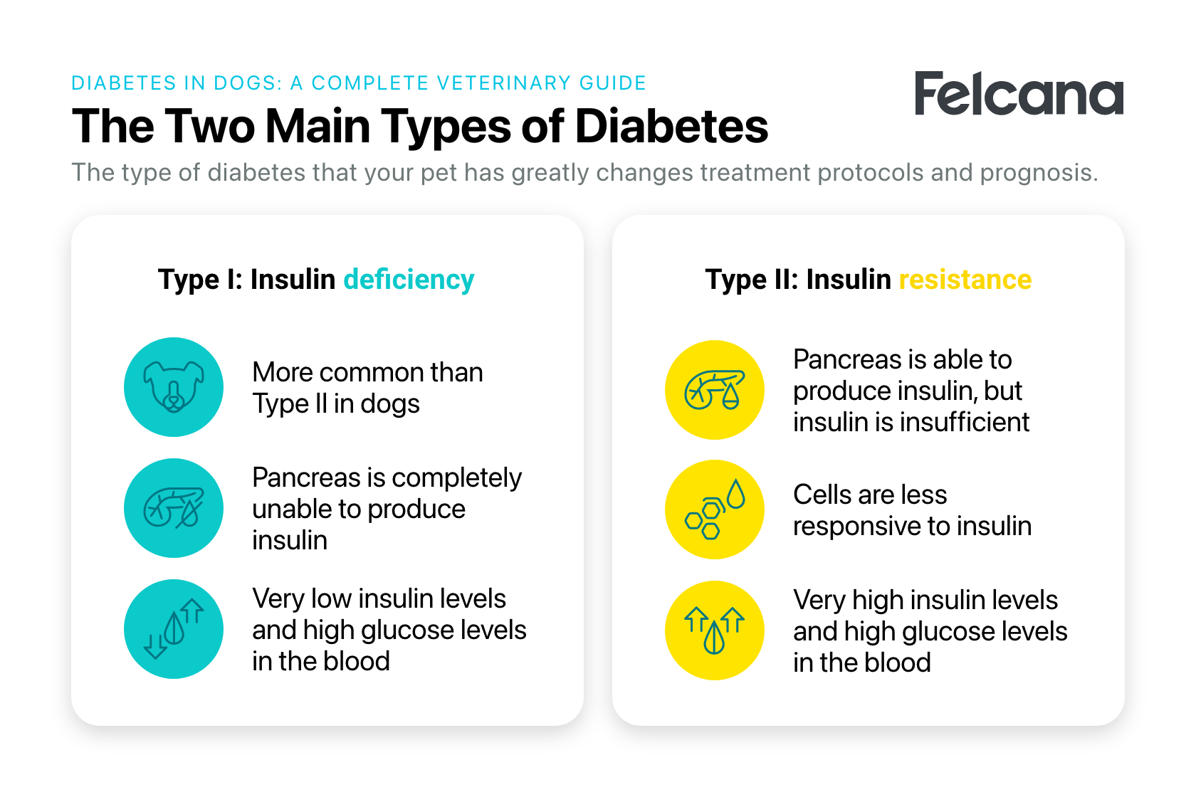 Comparison between type I and type II dog diabetes