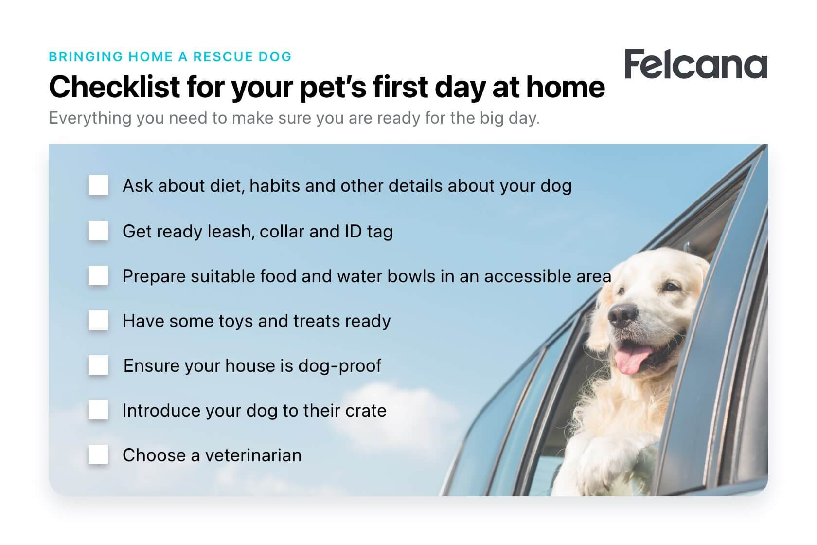 Checklist for your pet's first day at home