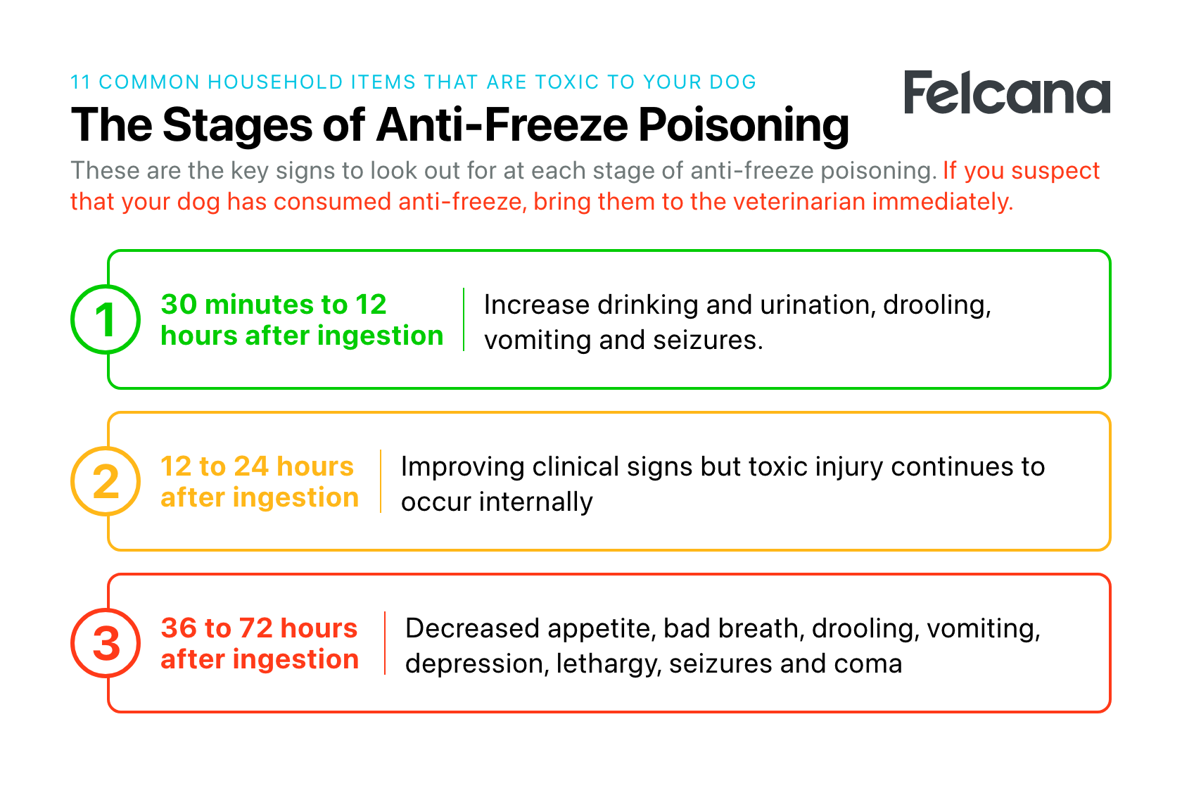 Summary of the three stages of anti-freeze poisoning in dogs and signs to look out for