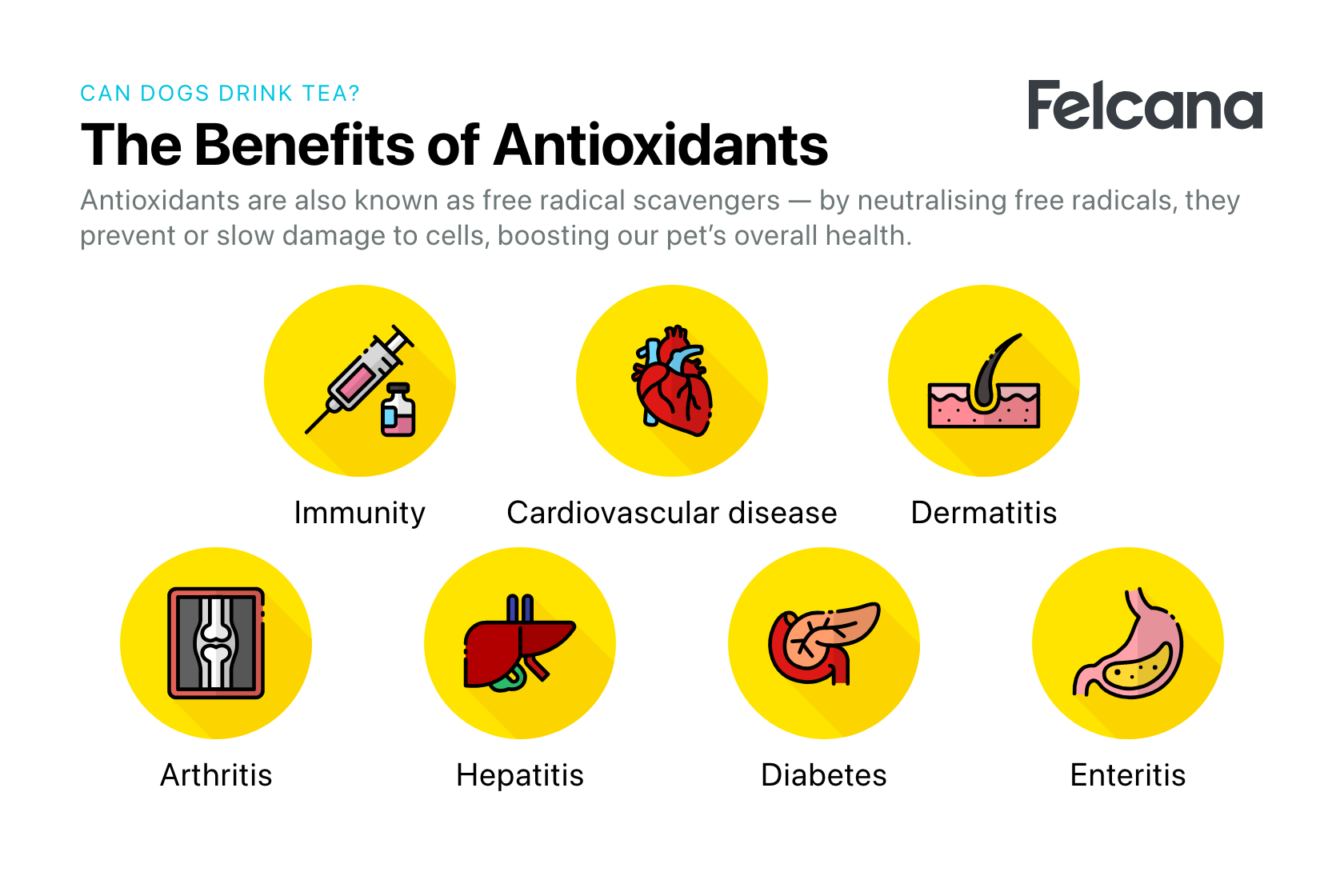 Benefits of antioxidants include neutralizing free radicals, preventing or slowing damage to cells