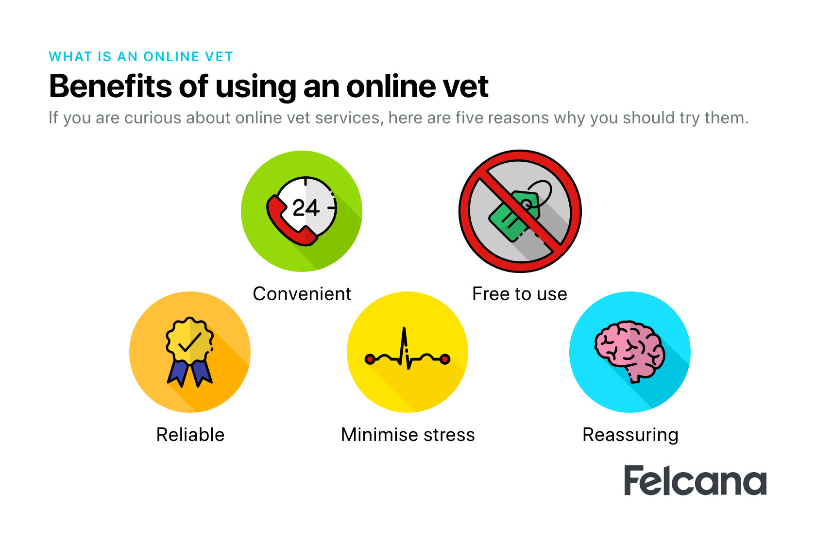 5 benefits of using an online vet: Convenient, free to use, reliable, reassuring, minimise stress