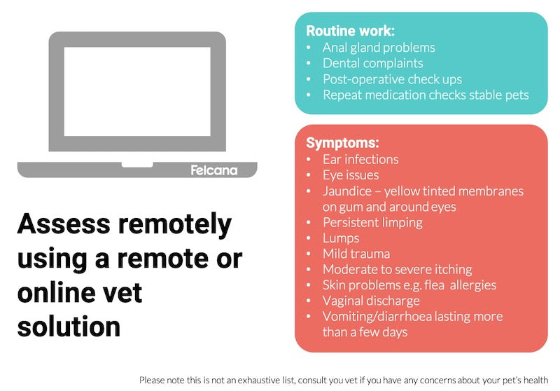 Use online vet chat telemedicine during lockdown for routine checkups, or moderate and persistent symptoms.
