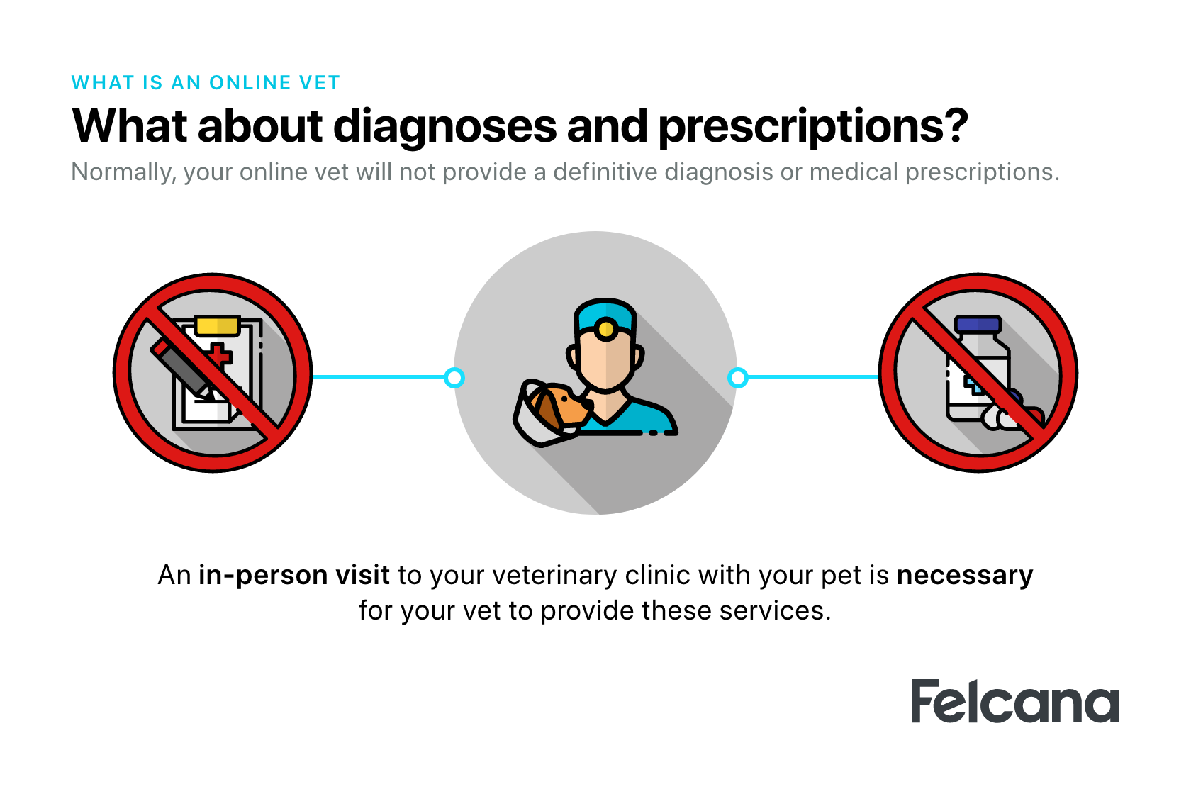 Online vets are unable to give your pet a definitive diagnosis or prescriptions, a visit to your in-person vet is necessary