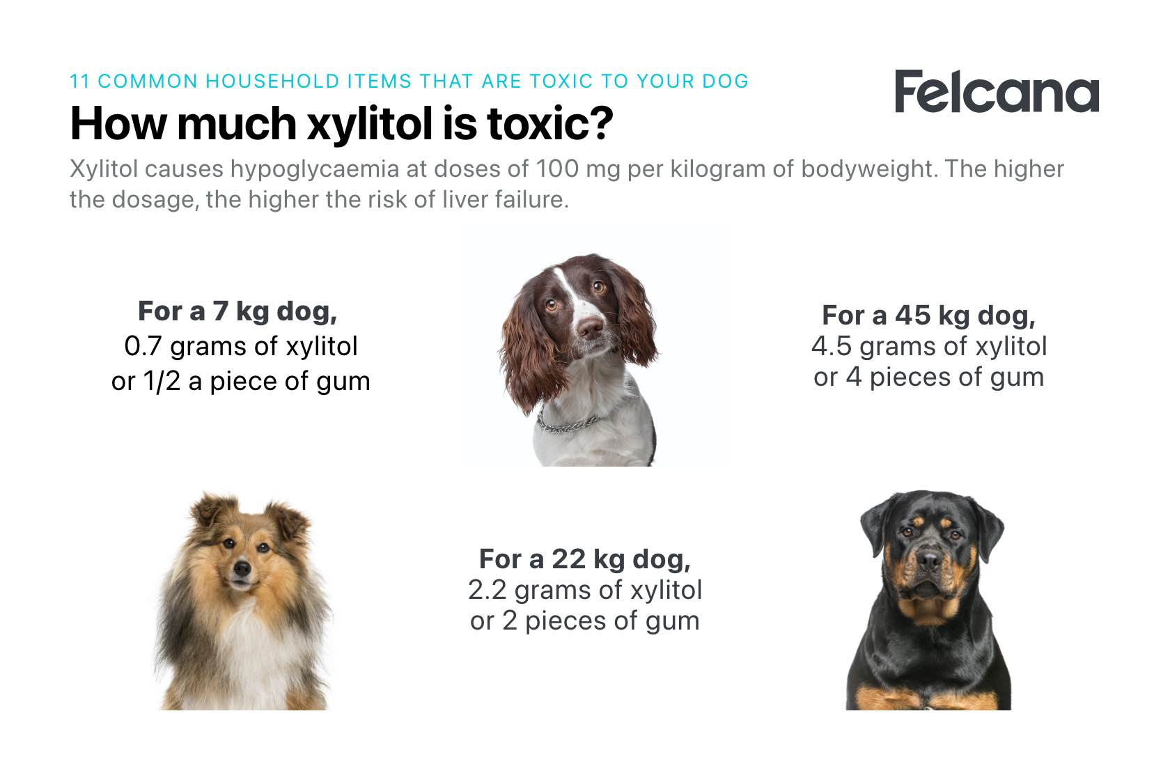 Amount of xylitol that is toxic to dogs according to bodyweight