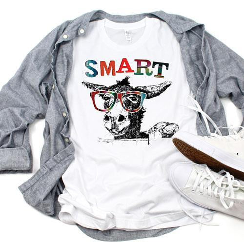 Serape Smart Donkey Sublimation Transfer