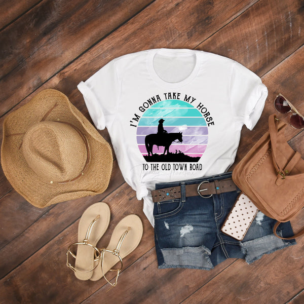 I'm Gonna Take My Horse Down to Old Town Road Fan Art Sublimation Transfer