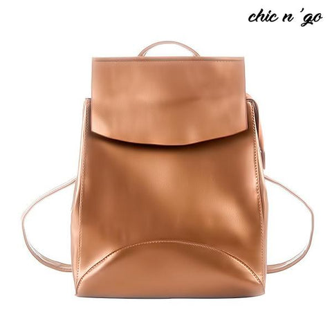 Chic-N-Go - The Classiest Women's Bag Ever