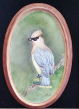 Load image into Gallery viewer, Cedar Waxwing Hand Painted Porcelain Plaque