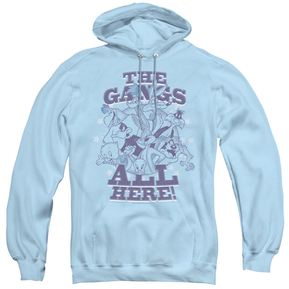 MEN'S LOONEY TUNES BLUE GANG PULLOVER HOODIE