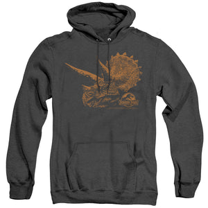 MEN'S JURASSIC PARK TRI MOUNT HEATHER PULLOVER HOODIE