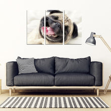 Laughing Pug Print Piece Framed Canvas- Free Shipping