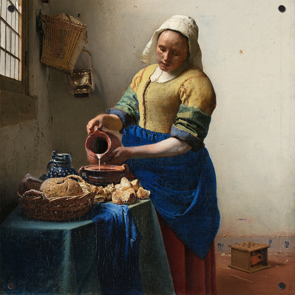 Vermeer Outdoor Art Print