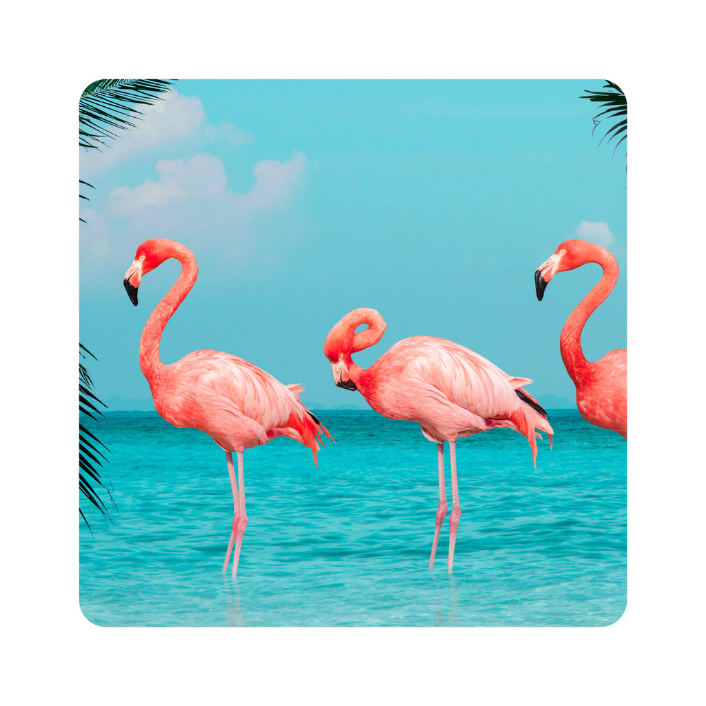Fun Weatherproof Coasters Flamingos