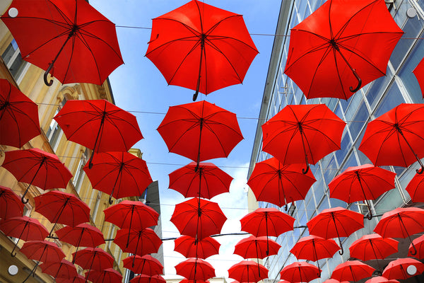 Umbrella Outdoor Art Print